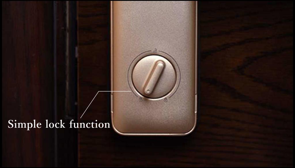 Schneider Electric S51 Smart Door Lock